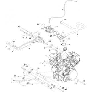 Двигатель 800сс