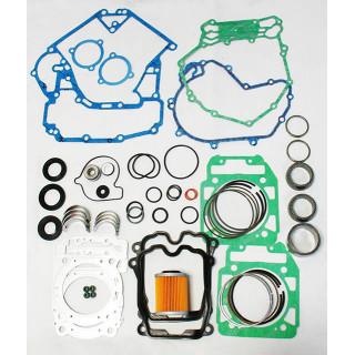Комплект для ремонта двигателя (800см2), LU083755