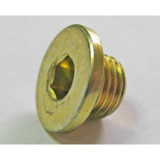 Болт-пробка с вн.шестигр. M14х1.5х10мм, сталь, LU023419